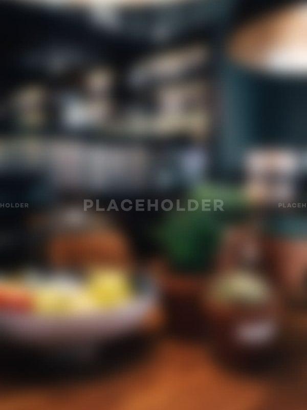 placeholder03